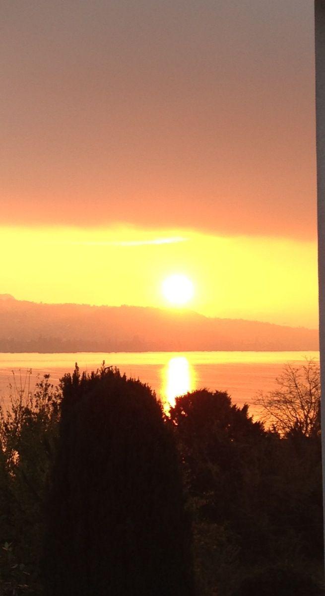 Lake Zurich sunset