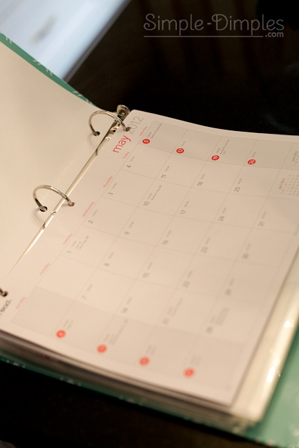 Home organization binder. Lots of great printables and I especially liked the idea about punching holes in a cheap calendar from Walmart to write on!