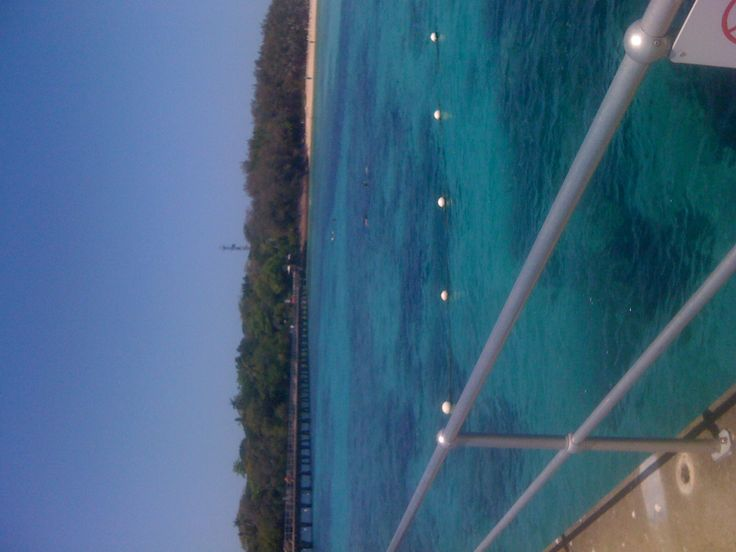 Green island off cairns nth qld. We snorkeled here, amazing..