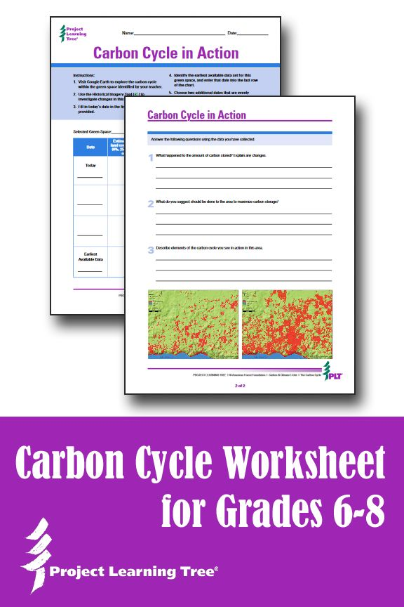 Carbon cycle lesson plan middle school