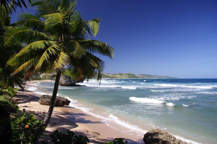 Where to go on holiday in January | http://www.weather2travel.com/holidays/where-to-go-on-holiday-in-january-for-the-best-hot-and-sunny-weather.php | Bathsheba Beach, Barbados © Holger Wulschlaeger - Shutterstock.com