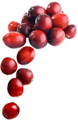 Mixed berries benefits
