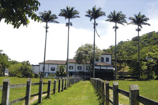 Fazenda Pointe Alta, Rio de Janeiro state, Brazil
