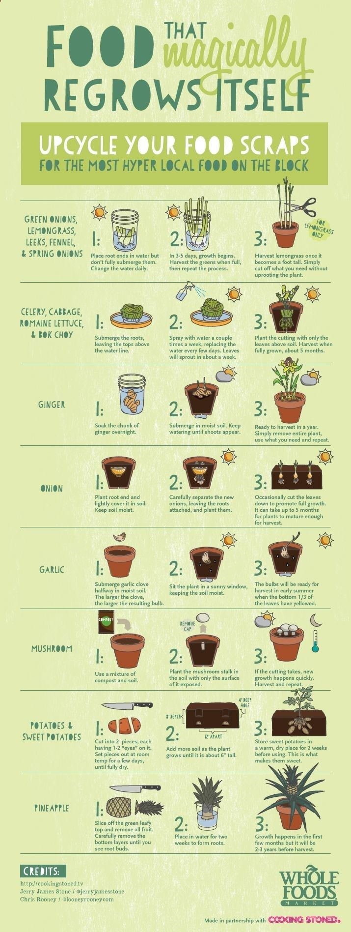 Food that magically regrow itself!