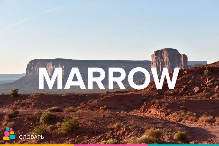 Marrow |ˈmæroʊ| — мозг, костный мозг, сущность  Spinal marrow — спинной мозг  Bone marrow — костный мозг   Bone-marrow transfusion |trænsˈfjuːʒn| — пересадка костного мозга      The pith |pɪθ| and marrow of a statement — сущность этого заявления  To extract the marrow of a book — выбирать самое существенное в книге; извлечь самую суть из книги  To the marrow of one's bones — до мозга костей; до глубины души  To be chilled / frozen to the marrow — продрогнуть до (мозга) костей  Примеры…