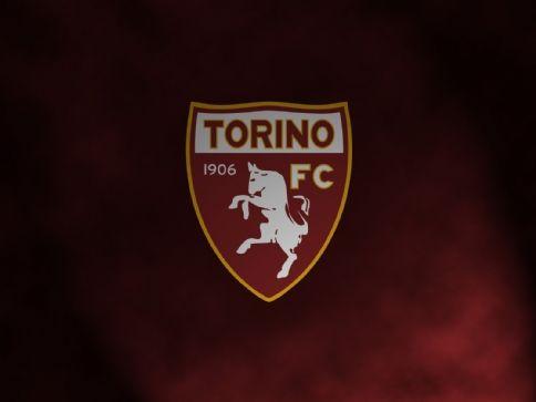 Torino Fv