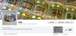 Üvegfestés MSE Facebook
