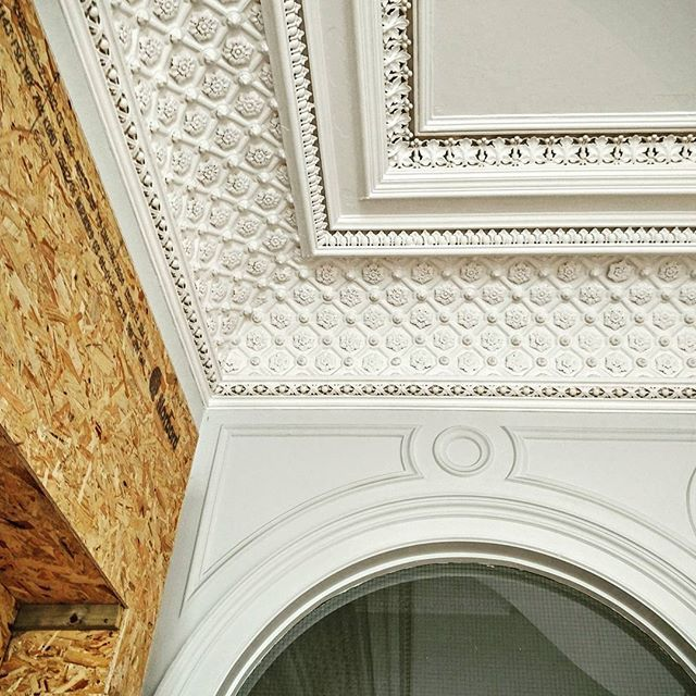 Amazing detailed cornices on a building that is well over 100 years old  #edinburgh #renovation #residential