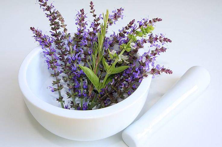 12 Natürliche Hilfsmittel gegen Nervosität, Aufregung und Anspannung