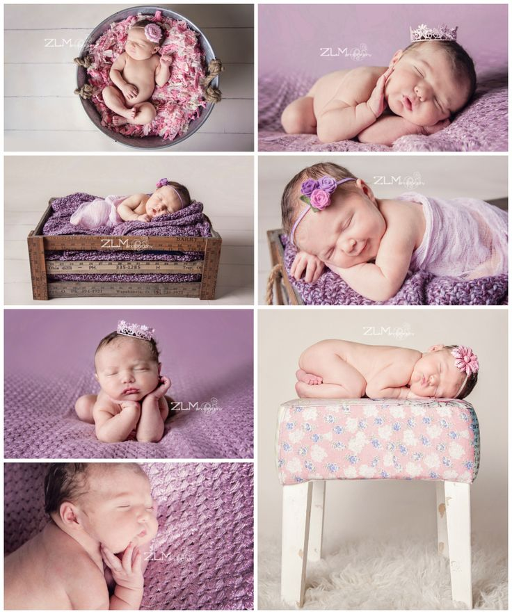 Newborn poses zlm photography