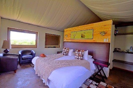 Springbok Lodge - offering a rewarding tented safari in Kzn's Nambiti Reserve