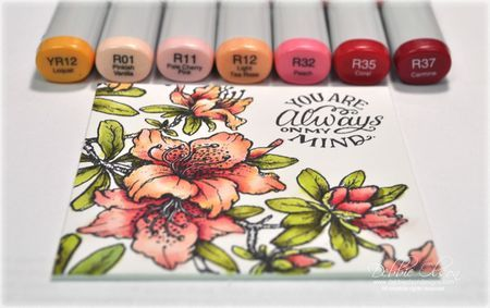 Colorful Copic and Art Squares Blog Hop
