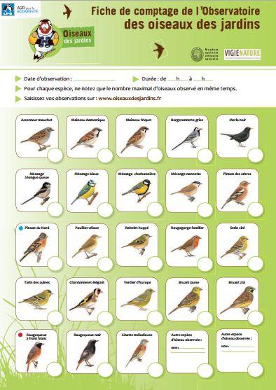 fiche_de_comptage_oiseaux