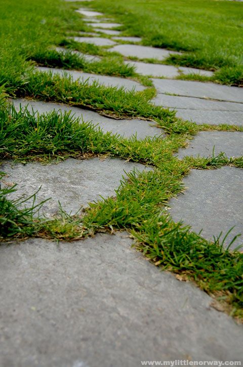 Grass softens the edges of this crazy paved pathway