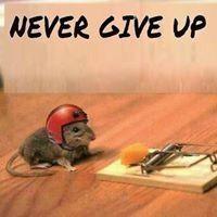 Nooit opgeven!