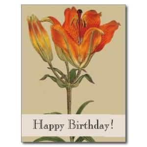 Vintage Botanicals Lily Happy Birthday Postcard online after you search a lot for where to buyDiscount Deals          	Vintage Botanicals Lily Happy Birthday Postcard Online Secure Check out Quick and Easy... by elsseaa