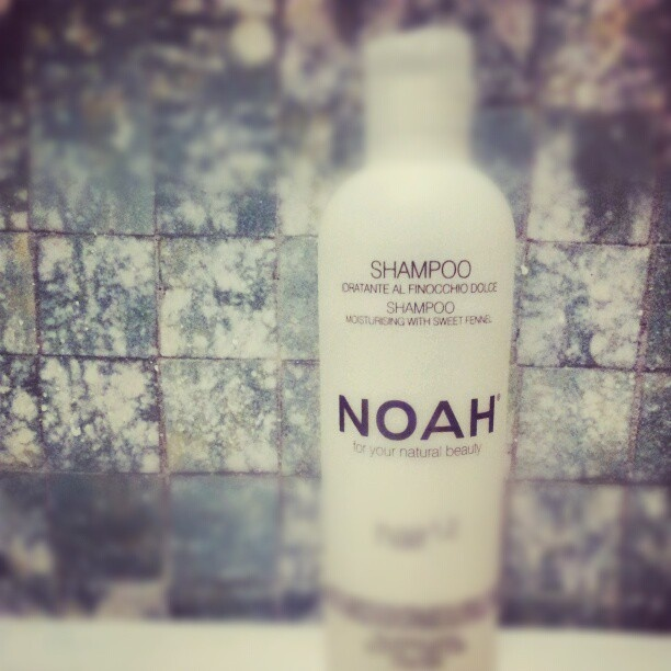 Noah shampoo