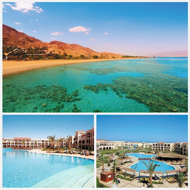 4★ Jaz Mirabel Park, Nabq Bay, Sharm El Sheikh, Egypt • 7 nights – All Inclusive – Stansted • Sunday 6th December 2015 • SAVE 41% (was £565pp) - Now £330pp
