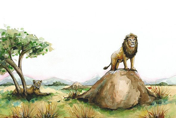 """""""Londi goes to Lionsrock"""" written by Ralph Ratshitanga and illustrated by Julie Sneeden"""