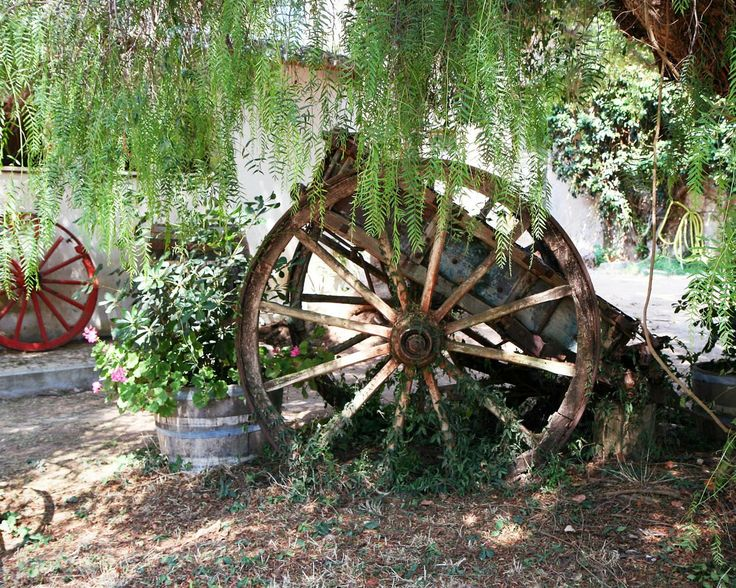 Rustic decor wagons and wheels print wine country wall for Things to do with old wagon wheels