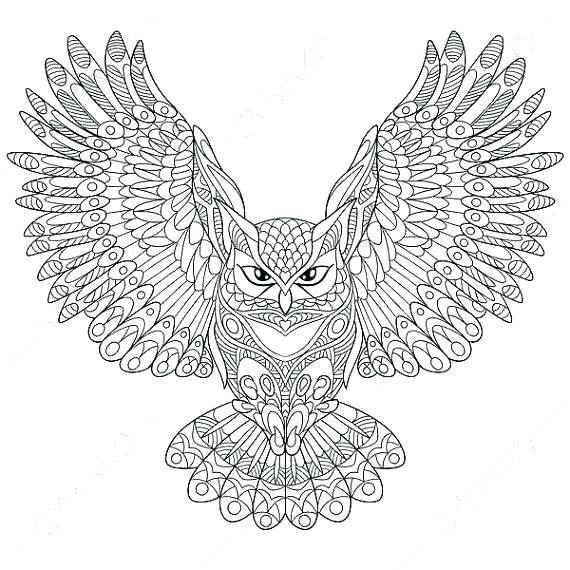 Abstract Owl Coloring Pages | Owl coloring pages, Adult ...
