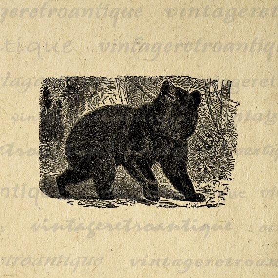 Digital Graphic Black Bear Image Printable Download Artwork Antique Clip Art. High resolution printable digital graphic download for printing, iron on transfers, pillows, tote bags, papercrafts, t-shirts, and more great uses. Personal or commercial use. This image is high quality and high resolution at size 8½ x 11 inches. Transparent background version included with every graphic.