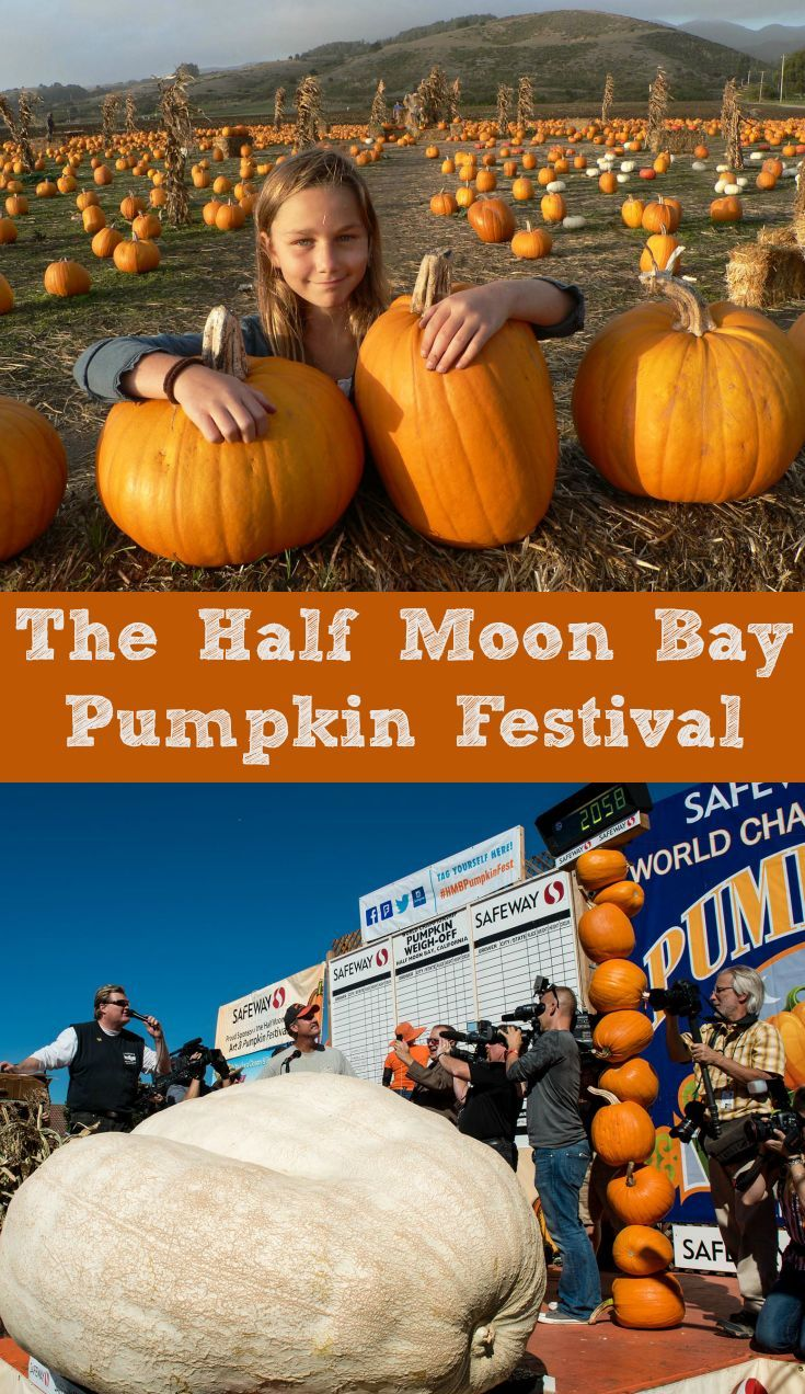 Tips for going to the Half Moon Bay Pumpkin Festival & World Championship Pumpkin Weigh-Off