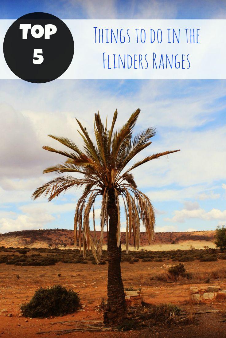 Top 5 things to do in the Flinders Ranges
