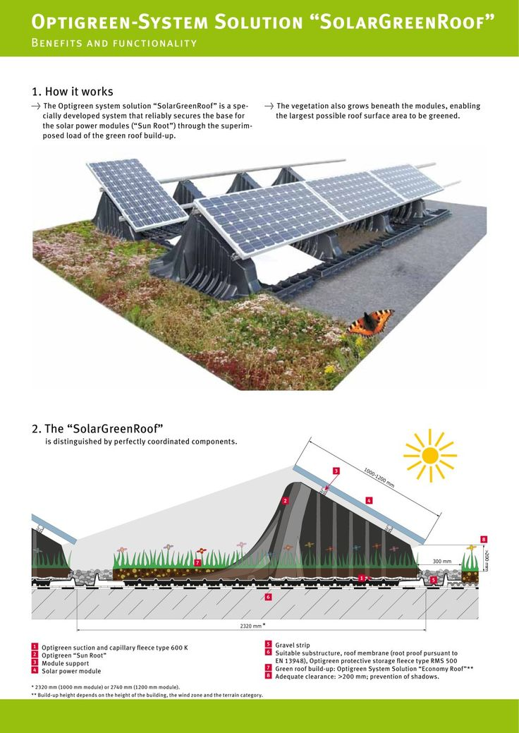 Perfect How To Build A Green Roof