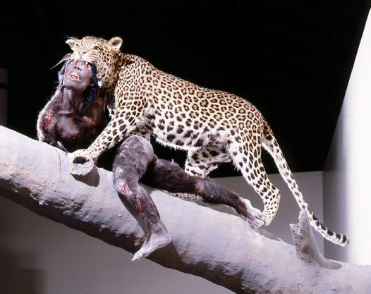 """""""A leopard's lunch"""" at the Australian Museum"""