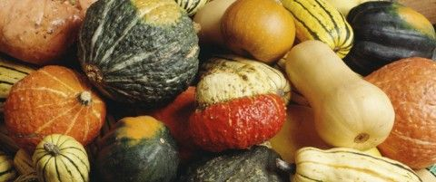 Winter Squash Guide by Stronger Together