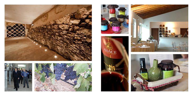 Wine experience #winery #wine #wineexperience #wedding #weddingapulia #apulia #italy #misposoacastellomonaci #engagement #marriage #love