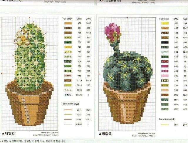 Schema punto croce Cactus-7