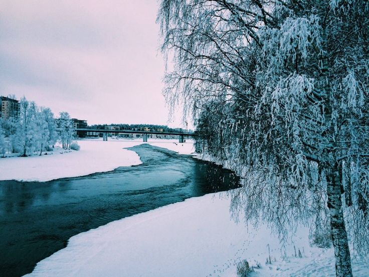 Студенческая жизнь в финском городе