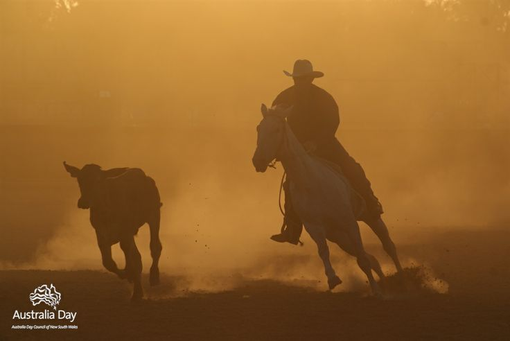 This is Rural Queensland, Australia. As the day breaks, a rider and his horse are silohetted during a campdraft competition at Twin Hills - an isolated arena where hundreds gather each year for three days of campdrafting, rodeo, gymkhana and horse racing.