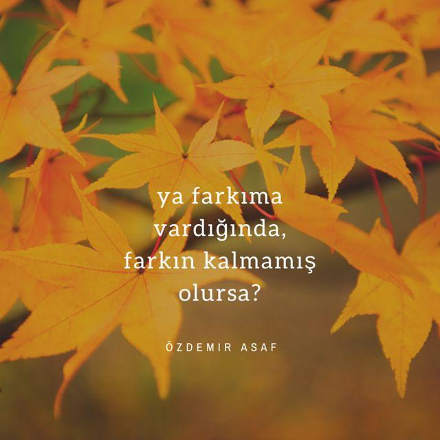 Özdemir Asaf Bi kuple edebiyat