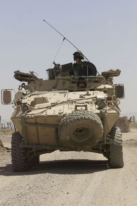 The Bison Armoured Vehicles support the light armoured vehicle (LAV) IIIs.