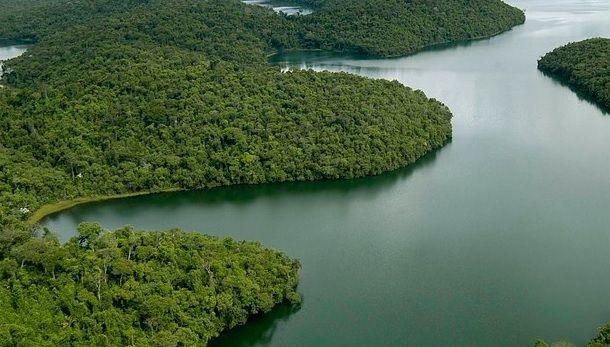 Minas Gerais tem motivos para comemorar e também muitos desafios pela frente. Dados do Atlas dos Remanescentes Florestais da Mata Atlântica, da Fundação SOS Mata Atlântica, apontam que o desmatamento do bioma caiu 4% no estado no período 2015-2016 em relação ao período 2014-2015