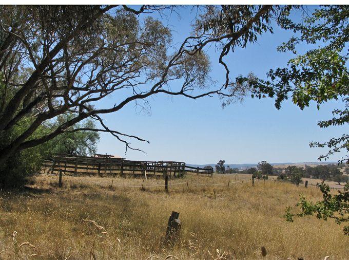Rediscovering soul country – exploring Borenore, a gold rush village near Orange in NSW Australia