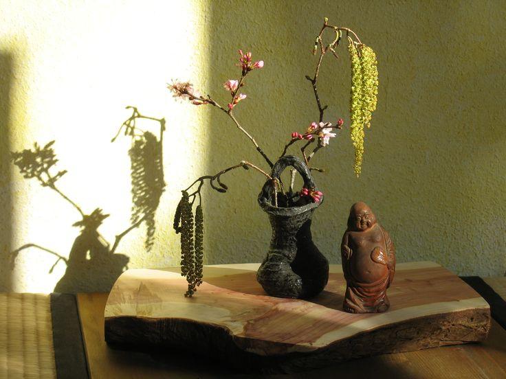 Teeblume im Frühling