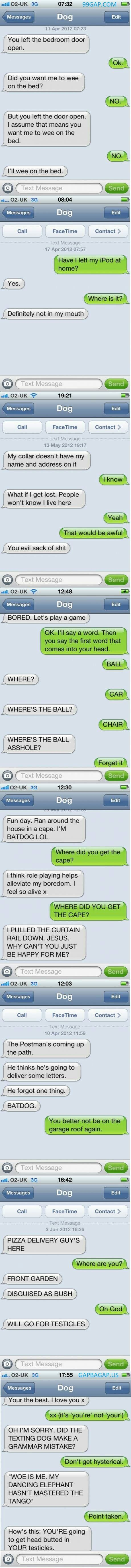 Top 8 #FunnyTexts Collection By Dogs #FunnyAnimals #FunnyDogs