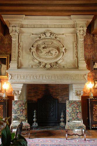 Château dazay le rideau fireplace with françois 1s salamander emblem