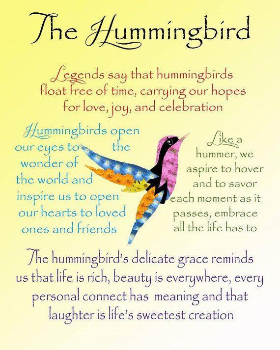Hummingbird Poster Gifts For Hummingbird Lovers Pinterest Hummingbird