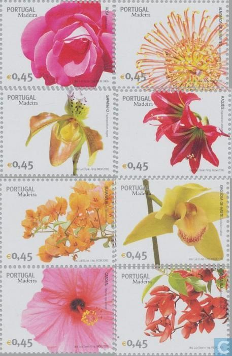 Postage Stamps - Madeira - Flowers