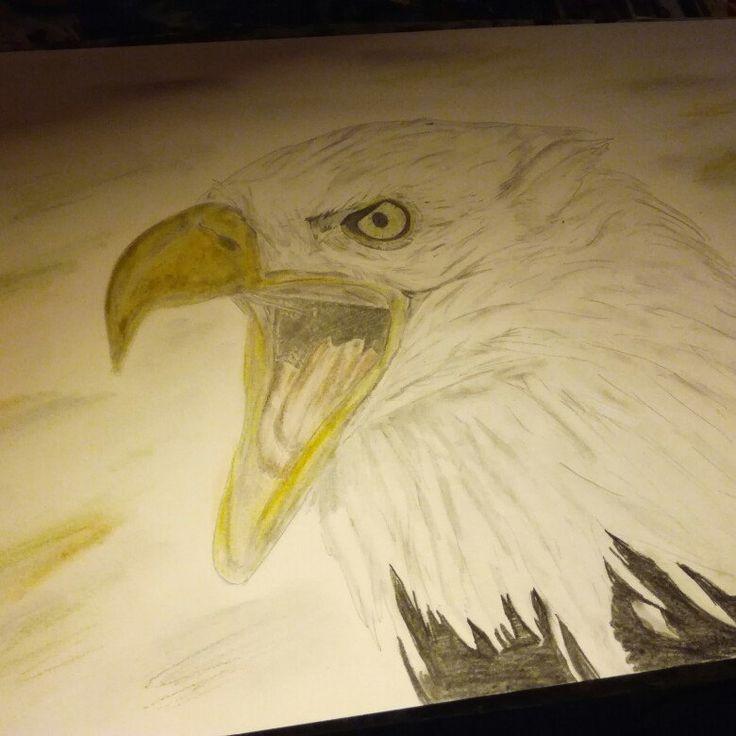 new eagle A3 #art #artist  #fineart  #wildanimal #animal #pencil #drawing #aigle