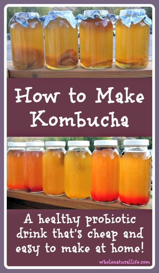 Kombucha is a probiotic drink that's a great addition to a healthy diet. It's cheap and easy to make your own kombucha at home--learn how today!