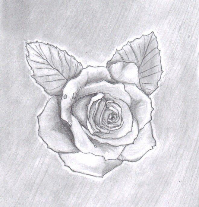 rose - Dessin de saiko-no-itsudo posté sur tvhland