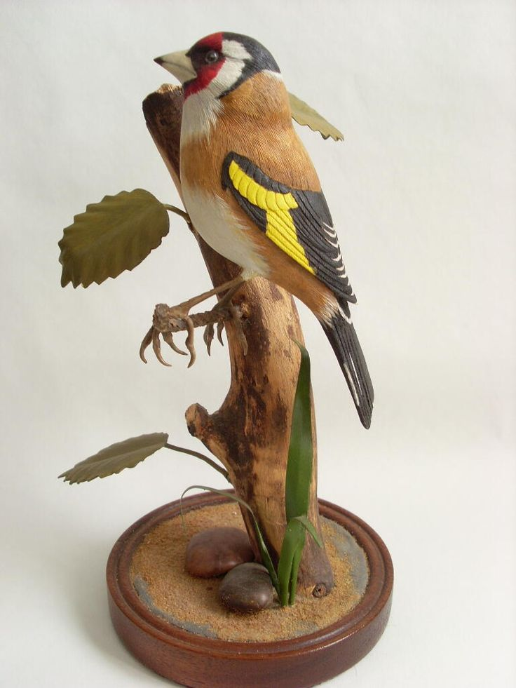 Best images about carved wood birds on pinterest