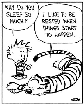 Calvin and Hobbes LOL!