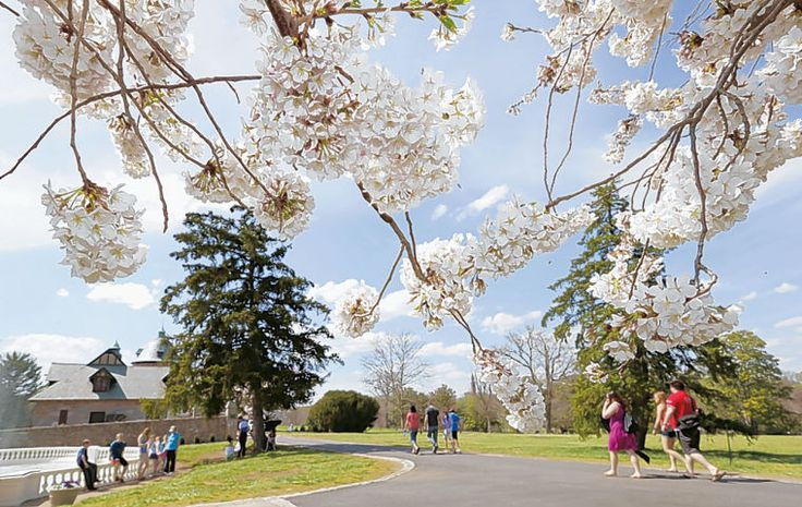 10 Must-Sees On List of Things To Do in Richmond